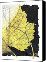 Elena Yakubovich Canvas Prints - Leaf Canvas Print by Elena Yakubovich