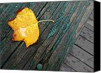 Don L Williams Canvas Prints - Leaf on Wood Canvas Print by Don L Williams