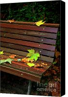 Wonderful Canvas Prints - Leafs in Bench Canvas Print by Carlos Caetano