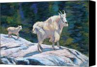 Goat Pastels Canvas Prints - Learning to Walk on the Edge Canvas Print by Mary Benke