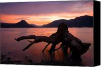 Lake Canvas Prints - Left Behind Canvas Print by Mike  Dawson