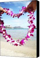 Waikiki Canvas Prints - Lei Framing Waikiki Canvas Print by Brandon Tabiolo - Printscapes