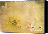 Photomanipulation Canvas Prints - Les Chances Sont  Canvas Print by Reflective Moments  Photography and Digital Art Images