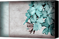 Blue Flowers Canvas Prints - Letter From Home Canvas Print by Bonnie Bruno