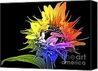 Sunflowers Canvas Prints - Life is Like a Rainbow ... Canvas Print by Gwyn Newcombe