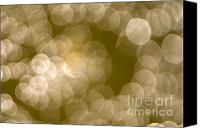 Dewy Canvas Prints - Light Canvas Print by Odon Czintos