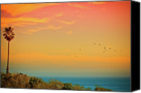 Flock Of Birds Canvas Prints - Light Of Sun Setting On  Malibu Beach Canvas Print by Albert Valles
