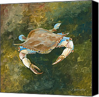 John Brown Canvas Prints - Lighter Blue Crab Canvas Print by John Brown