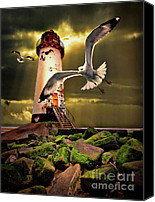 Seagull Photo Canvas Prints - Lighthouse With Seagulls Canvas Print by Meirion Matthias