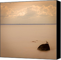 Magic Photo Canvas Prints - Lightness of Being Canvas Print by Mary Amerman