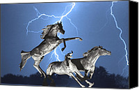 Horses Posters Canvas Prints - Lightning At Horse World BW Color Print Canvas Print by James Bo Insogna