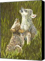 Wolf Cubs Canvas Prints - Lil Howlers Canvas Print by Ruth Seal