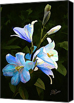 Lillies Canvas Prints - Lilies Canvas Print by Suni Roveto