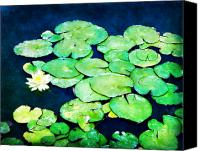 Lilly Pad Canvas Prints - Lily Pads and Lotus Canvas Print by Tammy Wetzel