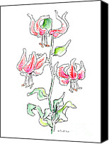 Calla Lily Drawings Canvas Prints - Lily Painting 3 Canvas Print by Gordon Punt