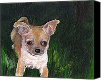 Pet Portrait Canvas Prints - Lily the Tan Chihuahua Canvas Print by Penny Stewart