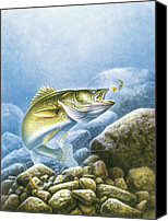 Rocks Painting Canvas Prints - Lindy Walleye Canvas Print by JQ Licensing