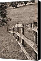 Barbed Wire Fences Photo Canvas Prints - Lines BW Canvas Print by JC Findley