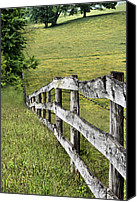 Barbed Wire Fences Photo Canvas Prints - Lines Canvas Print by JC Findley