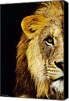 Sports Art Digital Art Canvas Prints - Lion Art - Face Off Canvas Print by Sharon Cummings