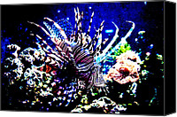 Lionfish Canvas Prints - Lion fish at Oklahoma Aquarium 2005 Canvas Print by Toni Hopper
