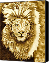 Lion Drawings Canvas Prints - Lion Pride Canvas Print by Jamie Warkentin