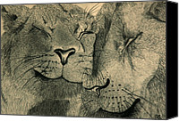 Lion Drawings Canvas Prints - Lions in Love Canvas Print by Ramneek Narang