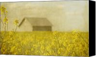 Yellow Canvas Prints - Little House on the Prairie Canvas Print by Rebecca Cozart