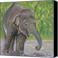 Elephant Pastels Canvas Prints - Little Luk Chai Canvas Print by Louise Green