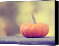 Autumn Photographs Canvas Prints - Little Pumpkin Canvas Print by Amy Tyler