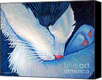 Cats Canvas Prints - Living The Dream Canvas Print by Brian  Commerford
