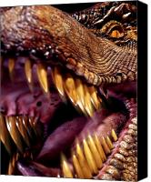 T Rex Canvas Prints - Lizard King Canvas Print by Kelley King