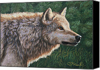 Wolf Painting Canvas Prints - Locked Canvas Print by Crista Forest