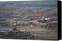 Rail Vehicles Canvas Prints - Logs Await Shipment By Rail To Mills Canvas Print by Joel Sartore