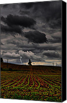 Farm Scenes Canvas Prints - Lone Strike Canvas Print by Emily Stauring