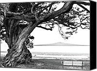 Peace Pyrography Canvas Prints - Lone tree Bench and Volcano Canvas Print by Yurix Sardinelly