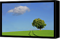 Solitude Canvas Prints - Lonely Tree Against Blue Sky Canvas Print by Ernie Watchorn