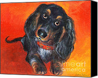 Cute Drawings Canvas Prints - Long haired Dachshund dog puppy Portrait painting Canvas Print by Svetlana Novikova
