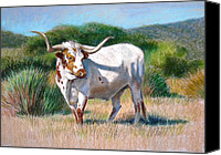 Bull Pastels Canvas Prints - Longhorn Bull Canvas Print by Sue Halstenberg
