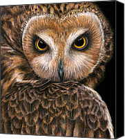 Colored Pencil Canvas Prints - Look into my Eyes Canvas Print by Pat Erickson