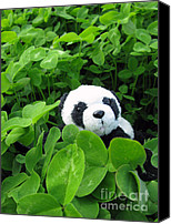 Baby Panda Canvas Prints - Looking for a lucky clover Canvas Print by Ausra Paulauskaite