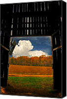 Barn Digital Art Canvas Prints - Looking Out Canvas Print by Lois Bryan
