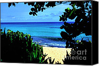 Solitude Canvas Prints - Los Tubos Beach Canvas Print by Thomas R Fletcher