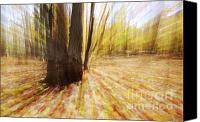 Faerie Canvas Prints - Lost in time Canvas Print by Mircea Costina Photography
