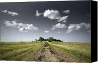 Rural Texas Canvas Prints - Lost Canvas Print by Mike Irwin