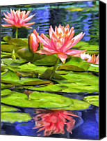 Lotus Blossoms Canvas Prints - Lotus Blossoms Canvas Print by Dominic Piperata