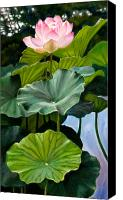 Lotus Canvas Prints - Lotus Rising Canvas Print by John Lautermilch
