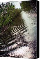 Orleans Pyrography Canvas Prints - Louisiana Swamp Tour 4 Canvas Print by Sarah Copeland