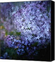 Spring Garden Art Canvas Prints - Lovely Lilac Canvas Print by Ellen Lacey