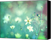 Flower Photograph Canvas Prints - Lovestruck Canvas Print by Amy Tyler